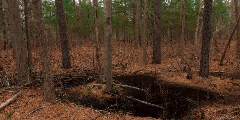 Yaphank, Weeks Pond Settlement