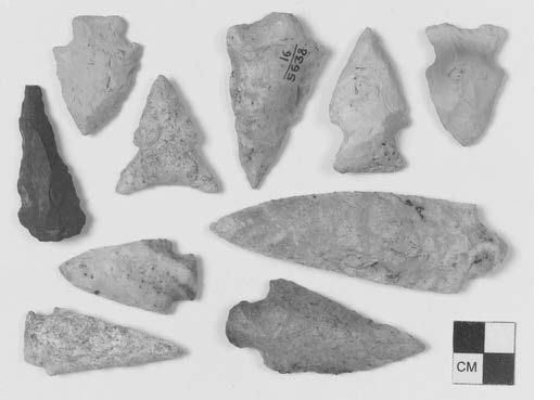 Arch_LongIsland_NY-Winippague-Site-Arrowheads Browse by Objects Jeremy Dennis On This Site