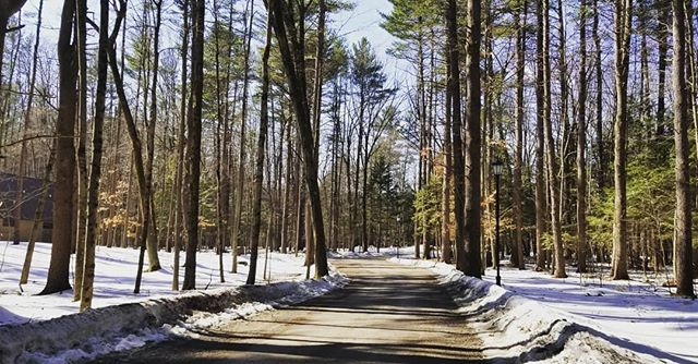 Beginning month at Yaddo, see you!