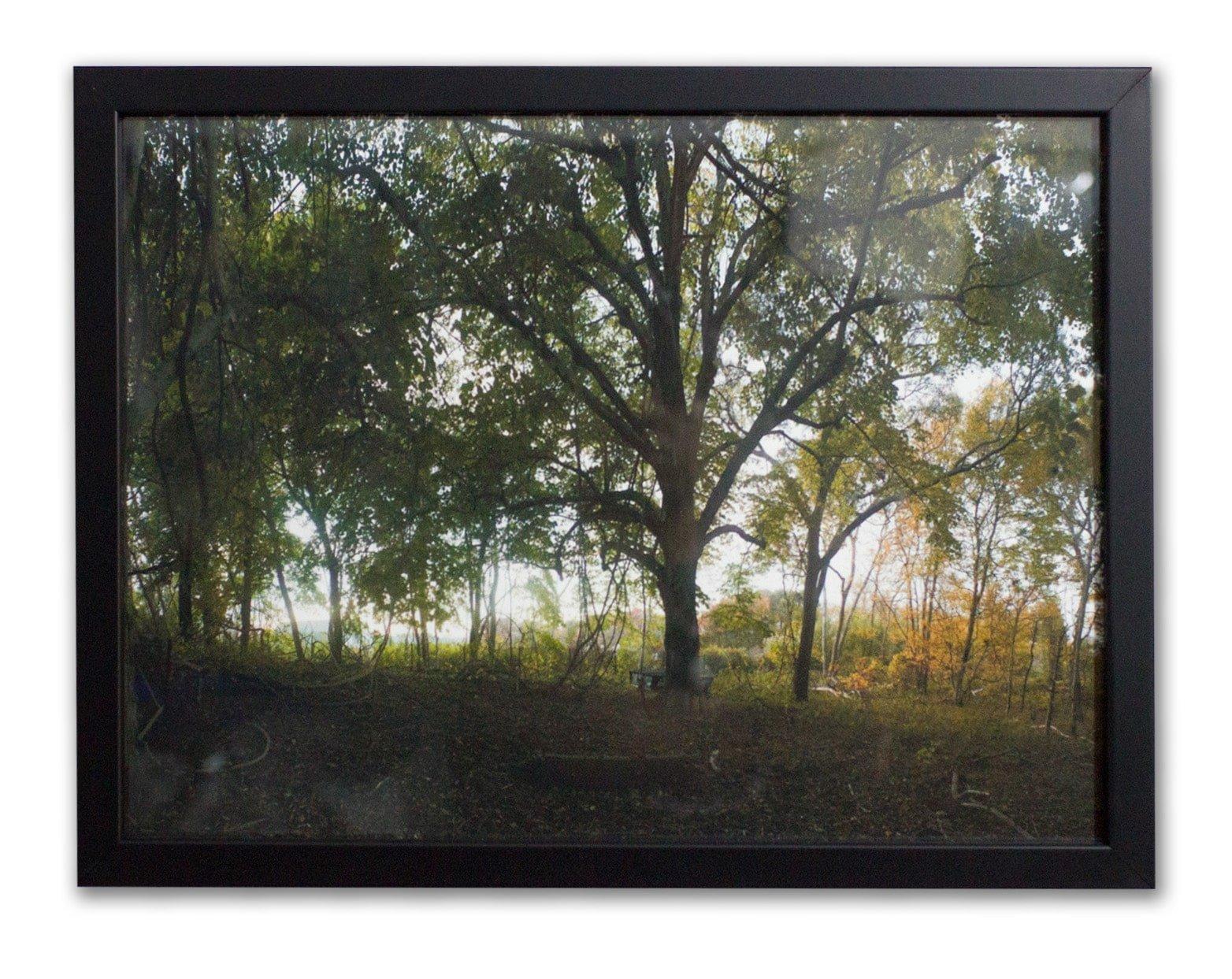 parrish pond 1
